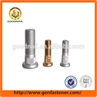 Carbon Steel Grade 8.8 H.D.G Wheel Blot sstainless steel bolt